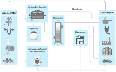 New IEA report: Outlook for biogas and biomethane: Prospects for organic growth