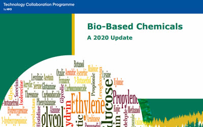 New Publication – Bio-Based Chemicals – a 2020 Update