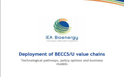 New Publication – Deployment of BECCS/U value chains – Technological pathways, policy options and business models