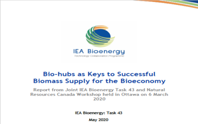 New Publication – Bio-hubs as Keys to Successful Biomass Supply for the Bioeconomy