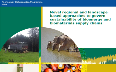 New Publication – Novel regional and landscape-based approaches to govern sustainability of bioenergy and biomaterials supply chains