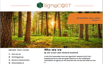 LignoCost Newsletter May 2020