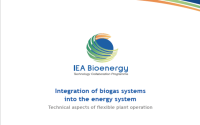 New Publication – Integration of Biogas Systems into the Energy System – Technical Aspects of Flexible Plant Operation