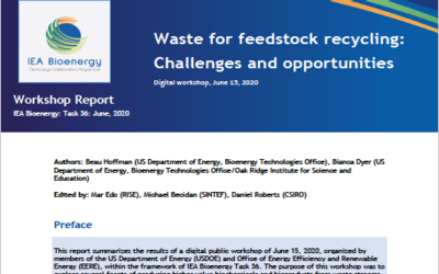 New Publication – Workshop report: Waste for feedstock recycling – Challenges and opportunities