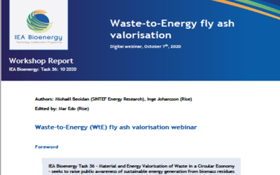 New Publication – Workshop report: Waste-to-Energy fly ash valorisation