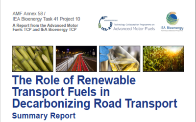 New Publication  – The Role of Renewable Transport Fuels in Decarbonizing Road Transport