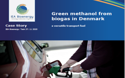New Publication – Case story: Green methanol from biogas in Denmark