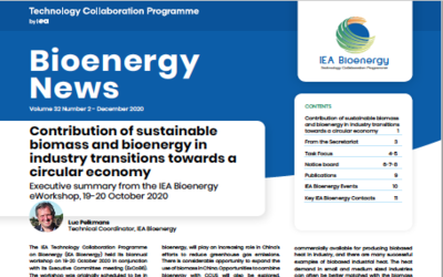 IEA Bioenergy News Volume 32(2) – December 2020