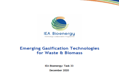 New Publication – Emerging Gasification Technologies for Waste & Biomass