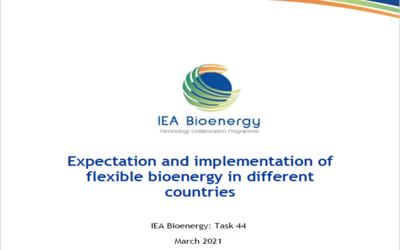 New Publication – Expectation and implementation of flexible bioenergy in different countries