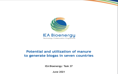 Potential and utilization of manure to generate biogas in seven countries