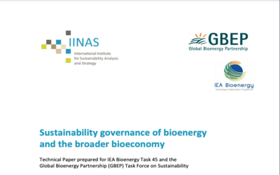 Sustainability governance of bioenergy and the broader bioeconomy